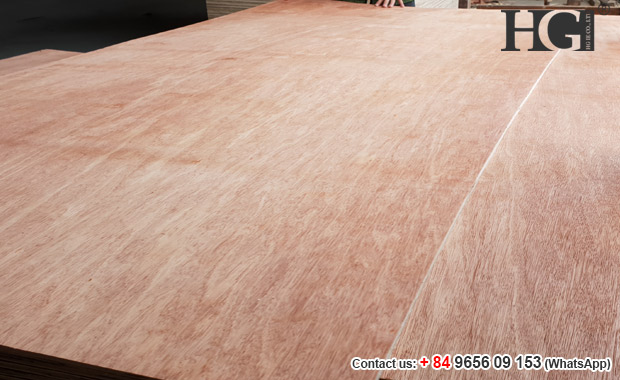 bintangor veneer double face poplar core commercial plywood